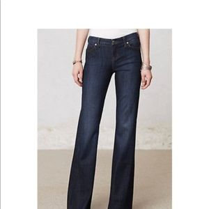 Anthro -- Level 99 Newport Wide Leg Jeans Size 24P